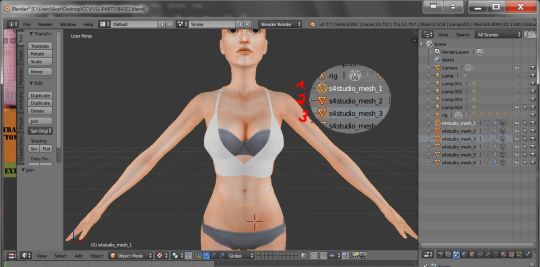 Nude making software