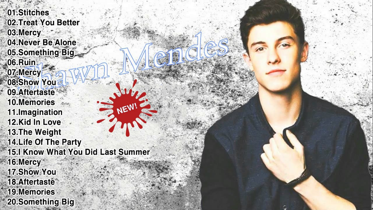 Shawn mendes popular songs